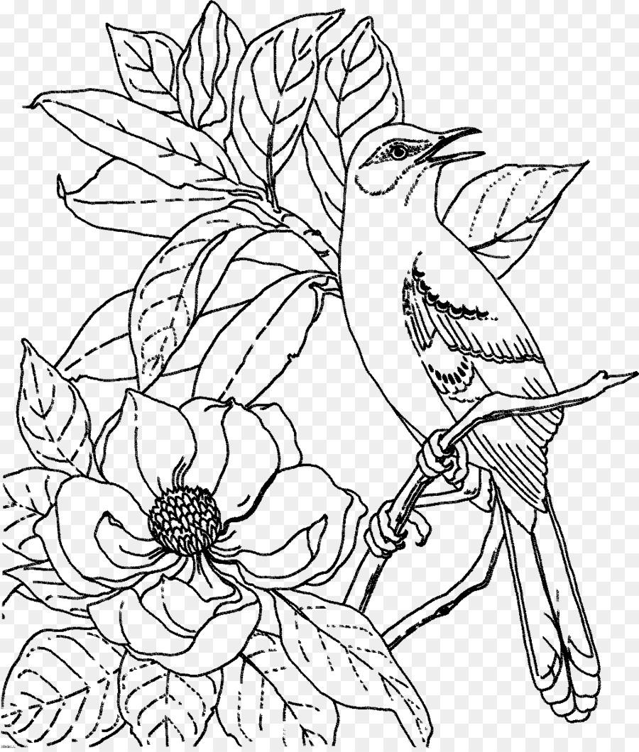 Estado de las aves libro para Colorear de Aves nido de Adultos ...