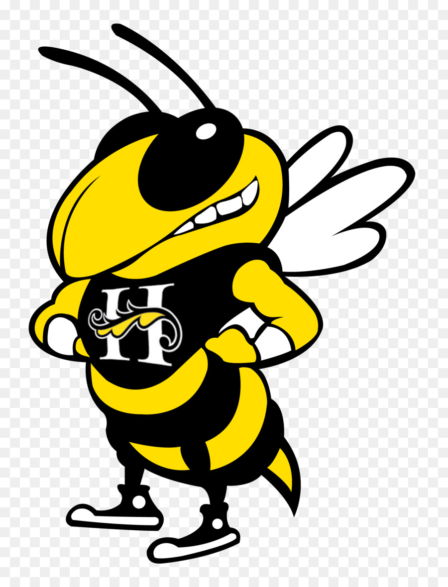 Georgia Tech Yellow Jackets Football Bobby Dodd Stadium Georgia Tech