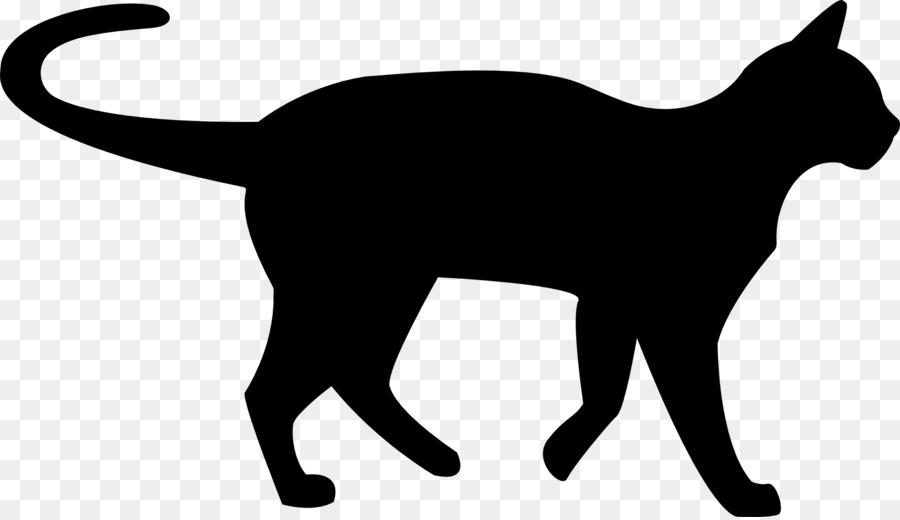 havana brown kitten black cat clip art black panther png download rh kisspng com
