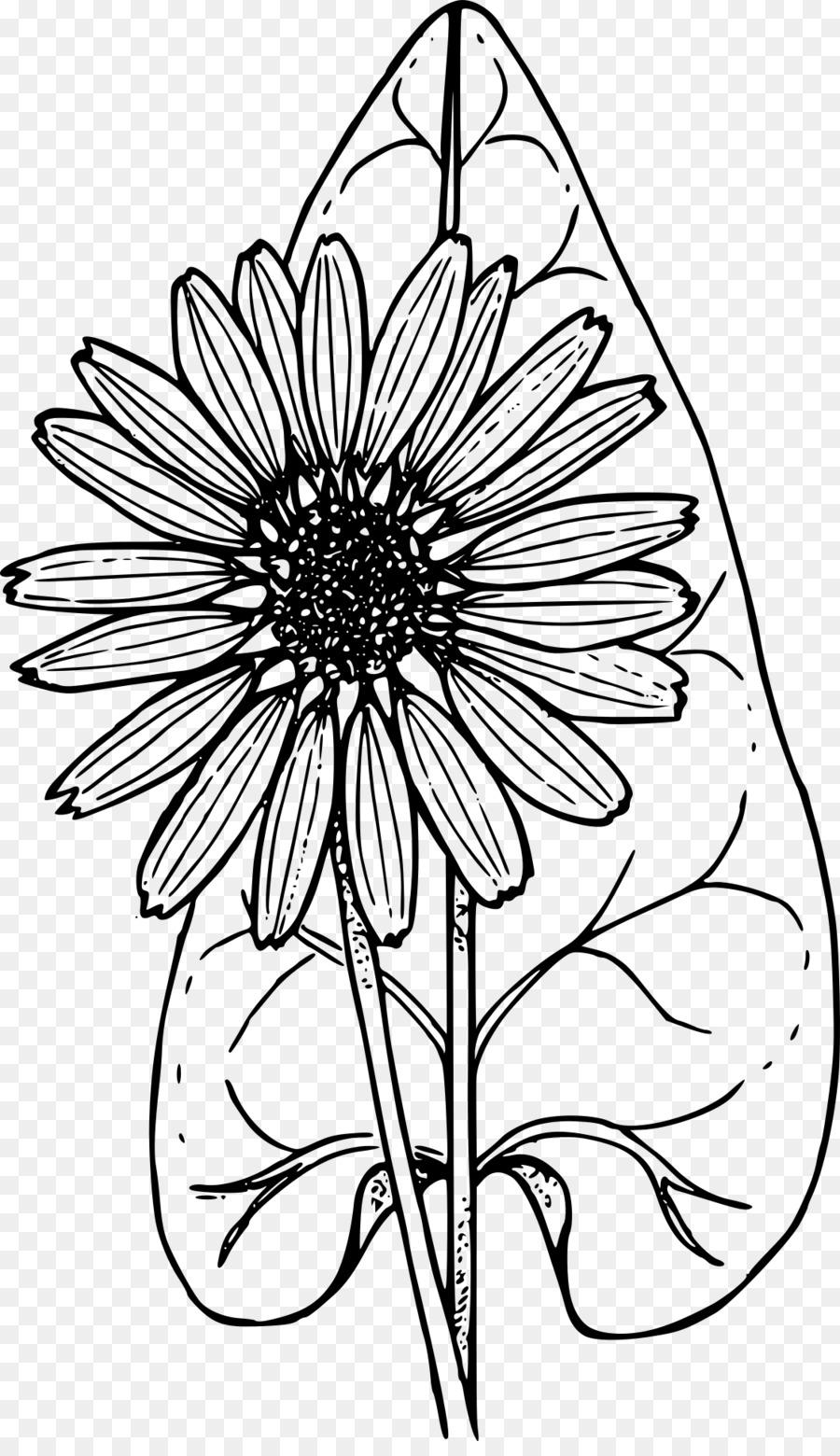 Libro para colorear de flores Silvestres de Niño - la santa comunión ...