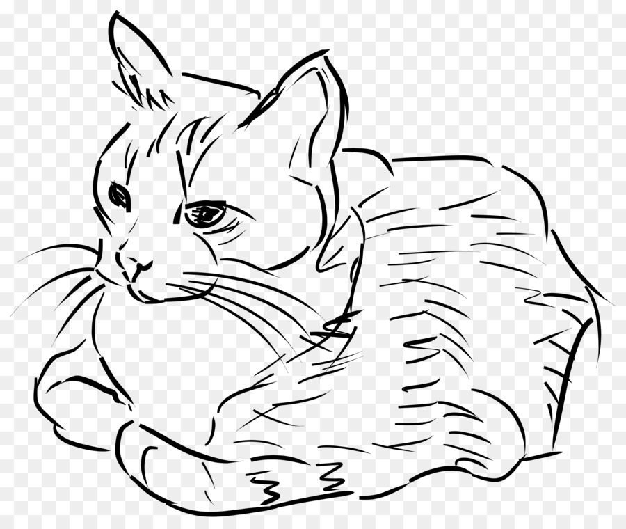 cat drawing line art clip art sketches png download 2500 2102
