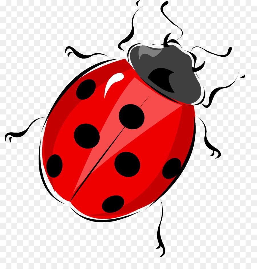 Ladybird life cycle of a ladybug diagram beetle worksheet bug png ladybird life cycle of a ladybug diagram beetle worksheet bug ccuart Images