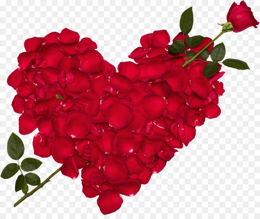 blue rose love flower desktop wallpaper good evening png download