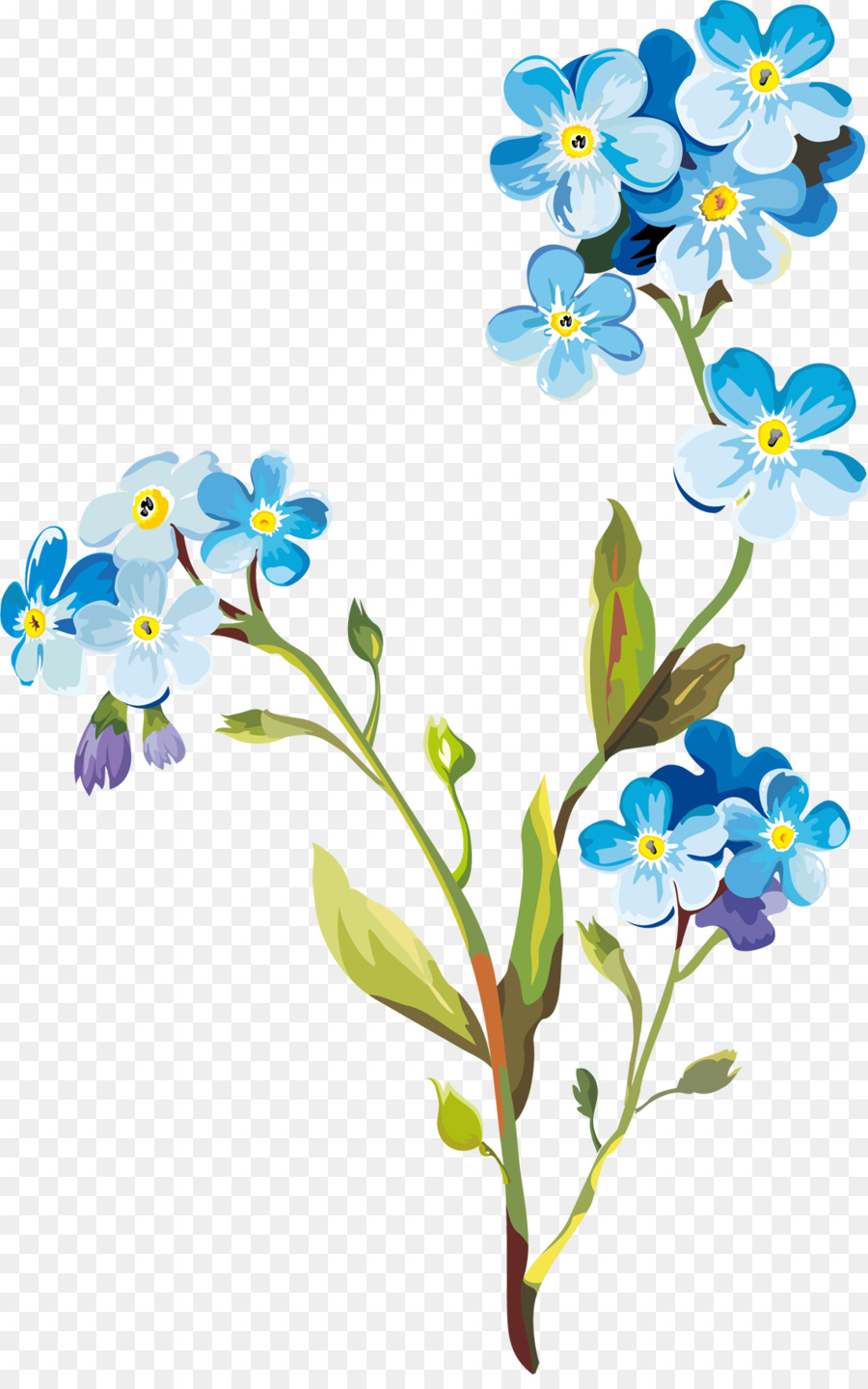 Flower Drawing Clip Art Spring Flowers Png Download 1137 1800
