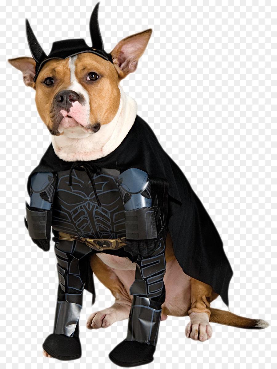 batman dog batgirl halloween costume - dogs png download - 861*1200