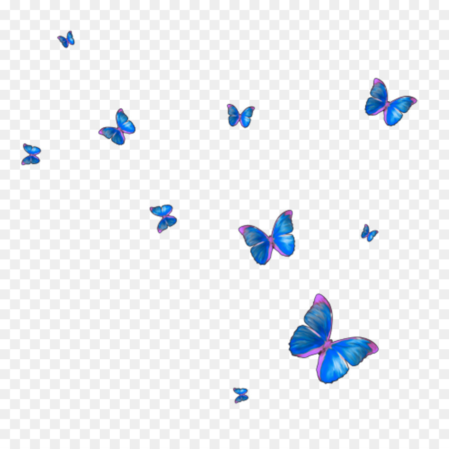 Monarch butterfly Insect - butterfly frame png download - 1024*1024 ...