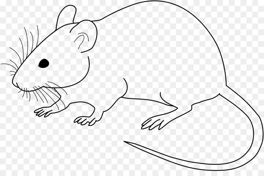 Drawing Lines With Mouse Opengl : Ratón de laboratorio rata dibujo clip