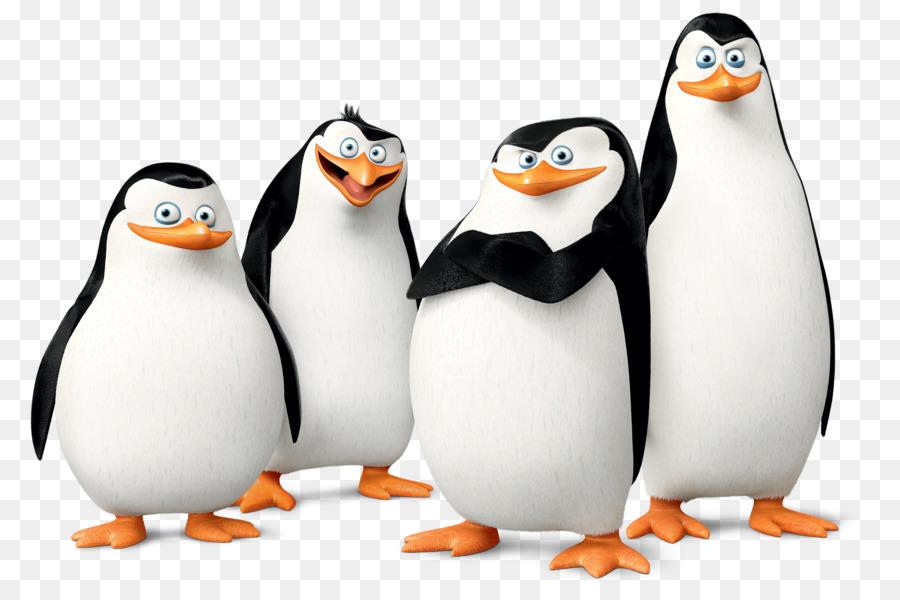 Kowalski, El Capitán De Los Pingüinos De Madagascar La Película ...