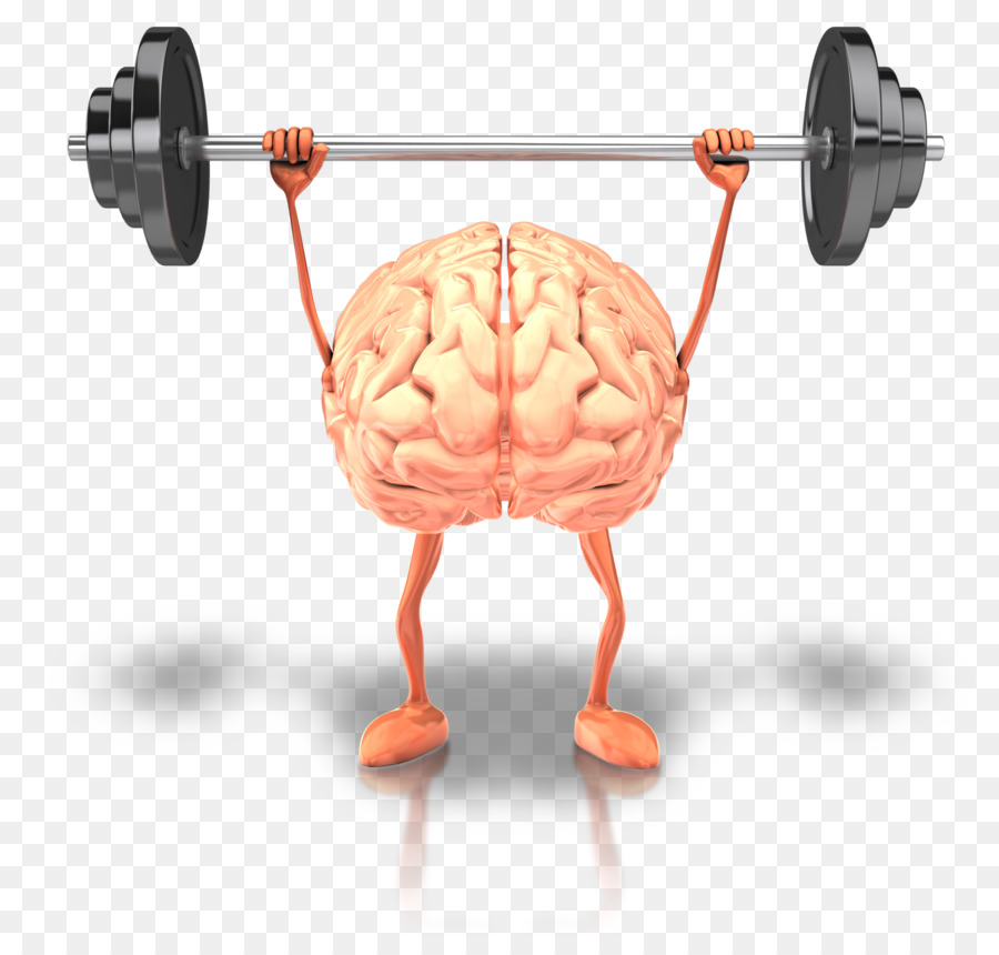 Brain Health Fish Oil Physical Exercise Human Body Mind Png