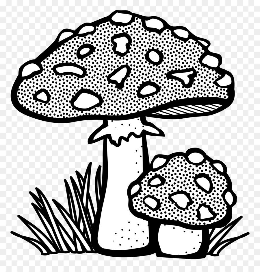Coloring book Clip art - mushroom png download - 2325*2400 - Free ...