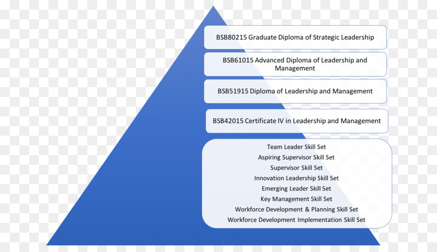 Leadership Organization Management Training Professional
