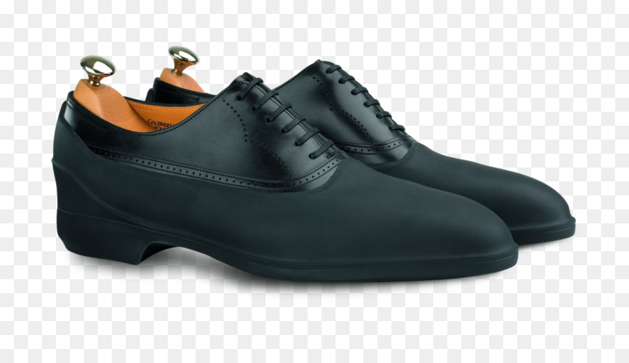Dress shoe galoshes