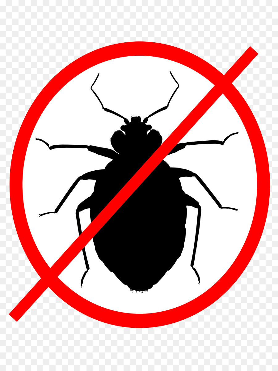 insect bed bug software bug pest clip art cockroach png download rh kisspng com clipart of cockroach cockroach clipart black