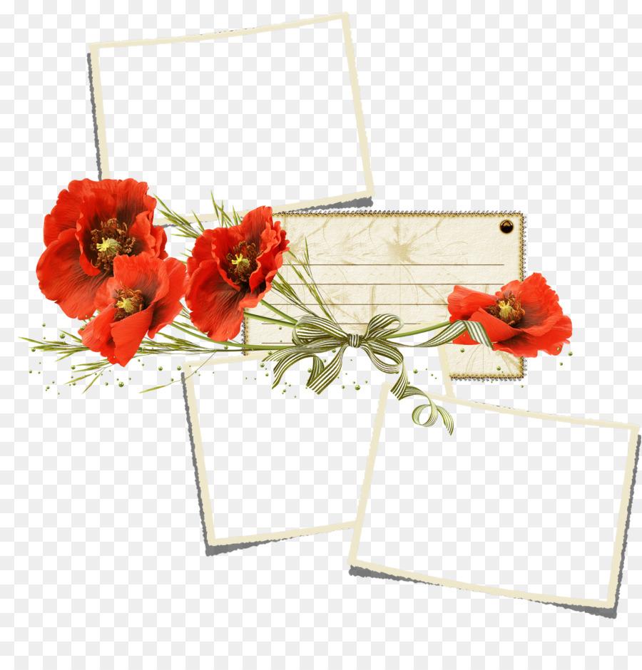 Poppy Flower Clip Art Webcam Png Download 15551600 Free