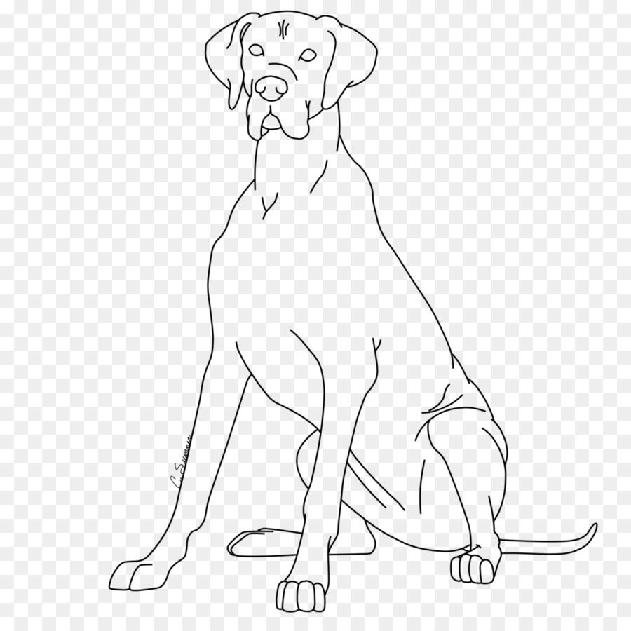 Cachorro gran Danés Redbone Coonhound libro para Colorear de Basset ...