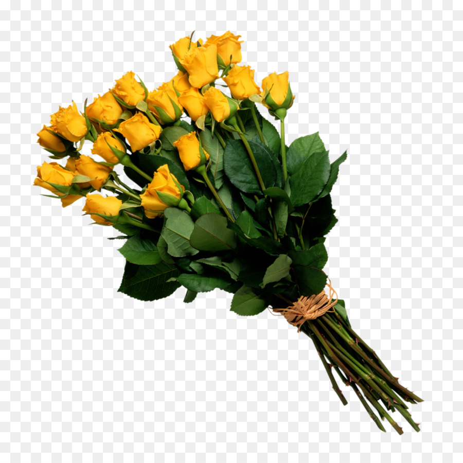 Flower bouquet Rose Cut flowers - bucket png download - 1024*1024 ...