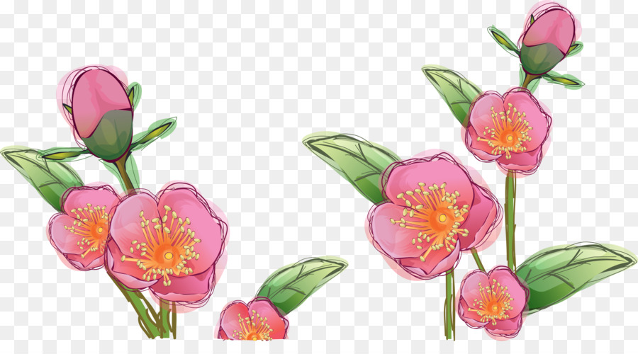 Drawing Flower Flowers Png Download 4700 2516 Free Transparent