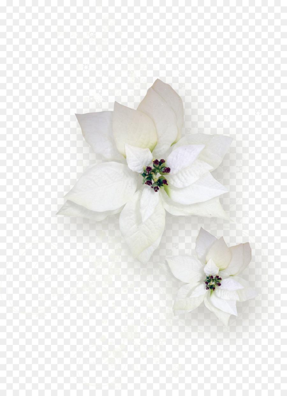 Cut flowers flowering tea rose plant cupid png download 1708 cut flowers flowering tea rose plant cupid mightylinksfo