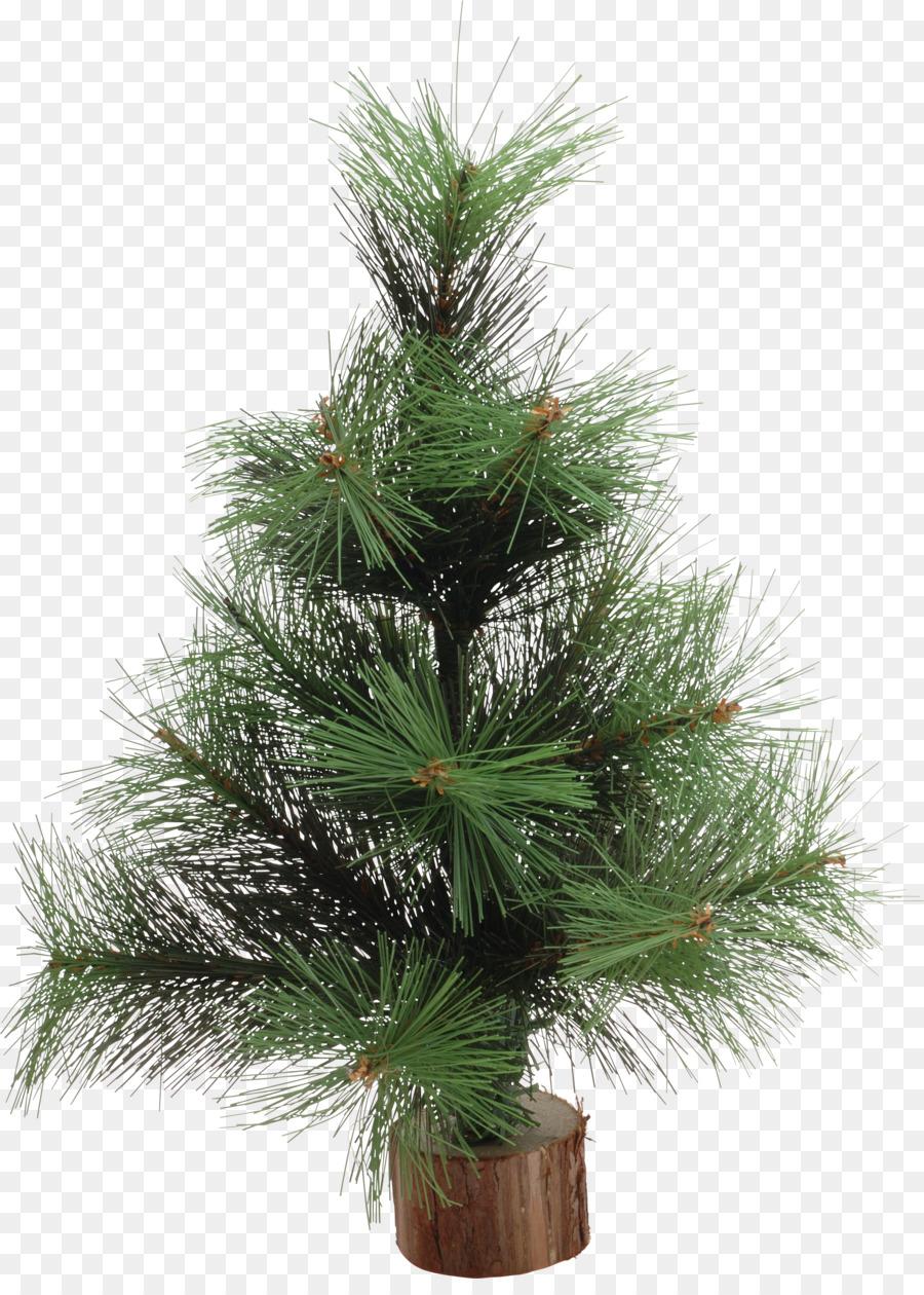 O Tannenbaum Download Kostenlos.Weihnachtsbaum Tannenbaum Fichte Kiefer Christmas Ornament Palme