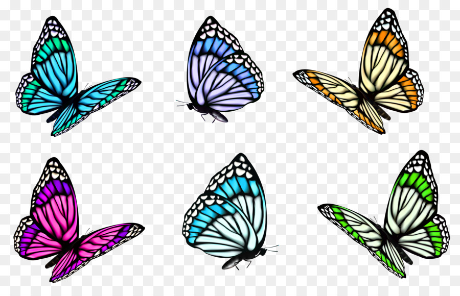 full color decorative butterfly illustrations clip art butterfly rh kisspng com