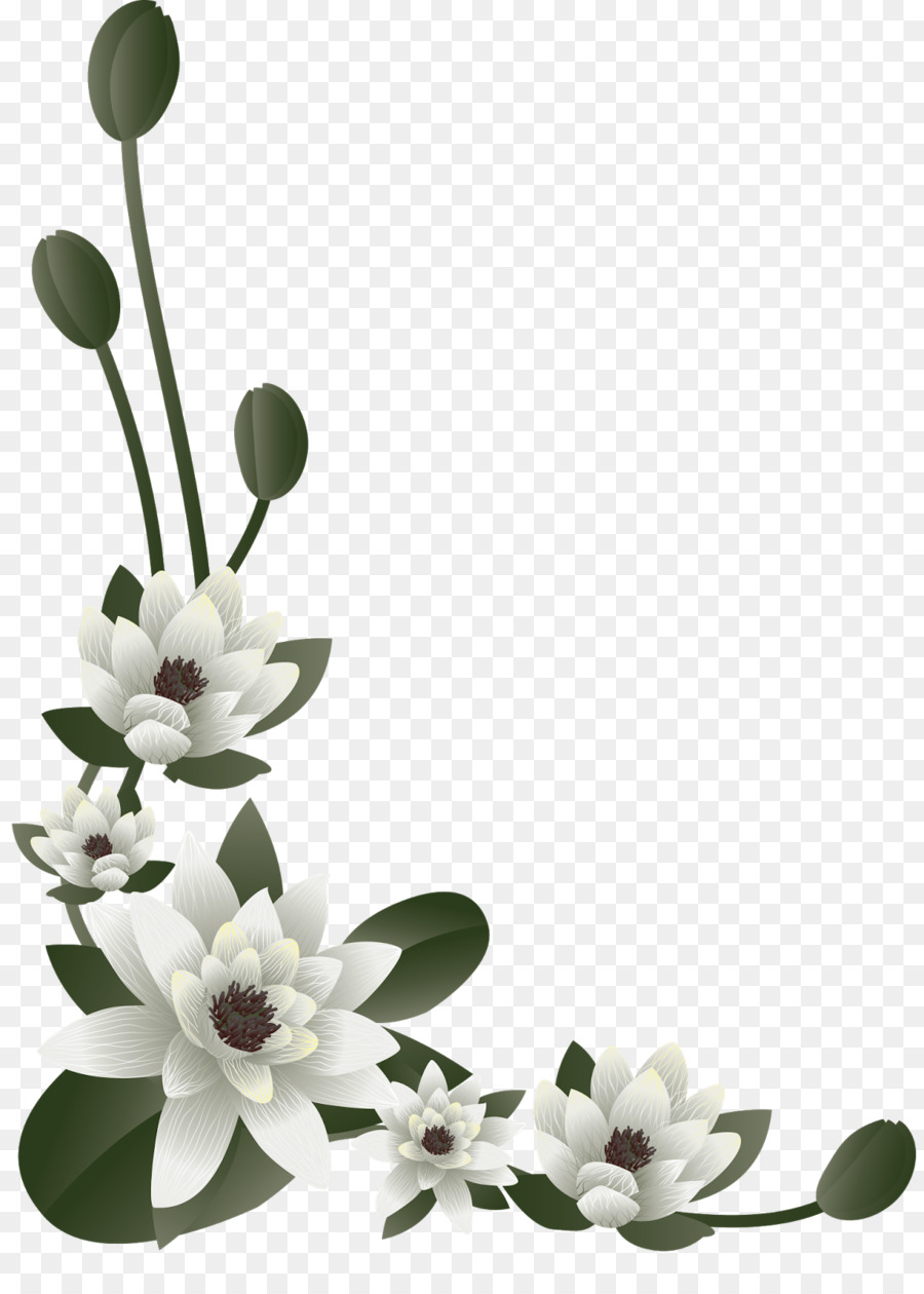 Flower Wedding anniversary Convite Floral design - flower frame png ...