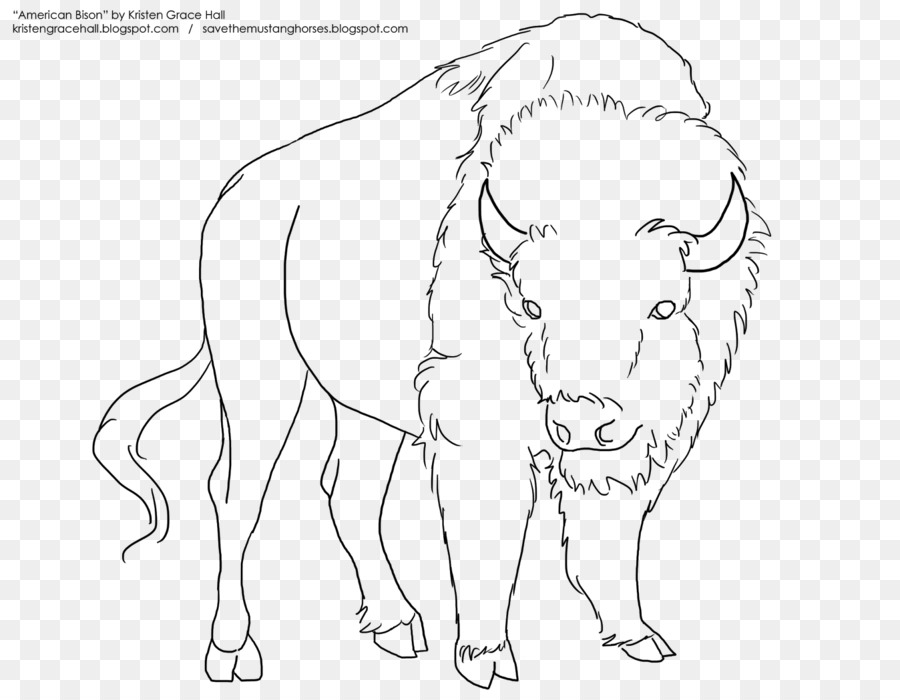 Línea de Dibujo artístico de bisonte Americano Caballo Croquis ...