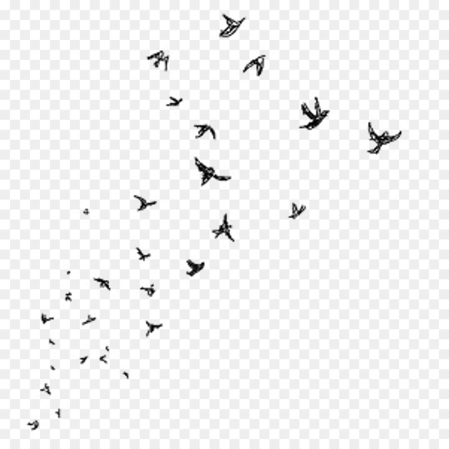 Desktop Wallpaper Picsart Photo Studio Bird Drawing Clip Art