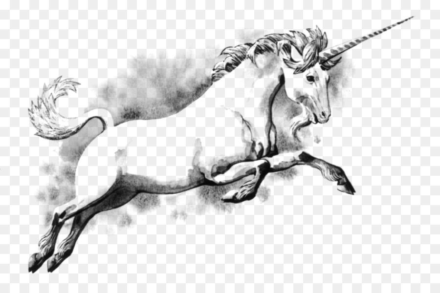 Unicorn Fairy Tale Buku Mewarnai Makhluk Legendaris Skotlandia