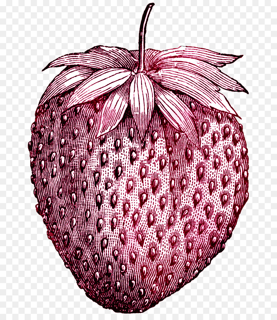 f32ebe2c247b2 Strawberry Tattoo Fruit Ice cream Drawing - vintage png download ...