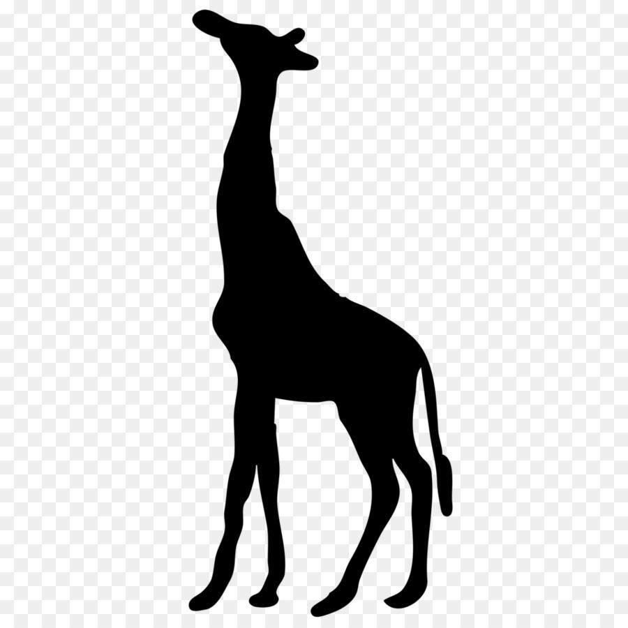 clip art giraffe vector png download 958 958 free transparent rh kisspng com png clipart girafe giraffe clipart
