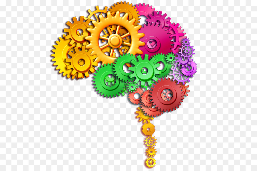 Human Brain Stock Photography Function Clip Art