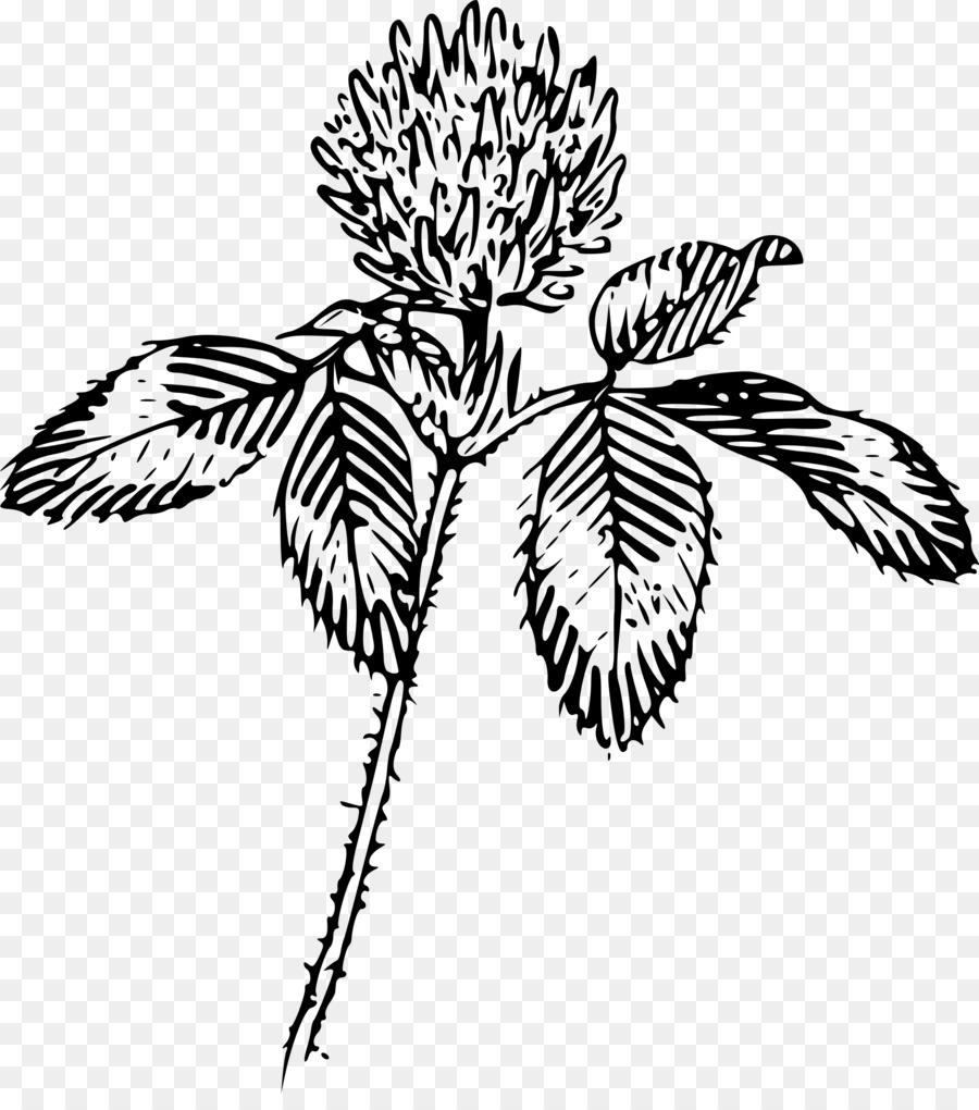 Four leaf clover clip art clover png download 21502400 free four leaf clover clip art clover mightylinksfo
