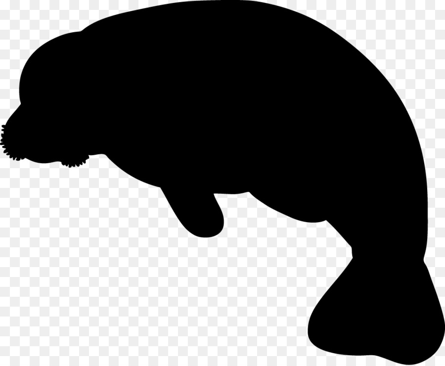 west indian manatee baby manatee miami manatees clip art full rh kisspng com  cute manatee clip art