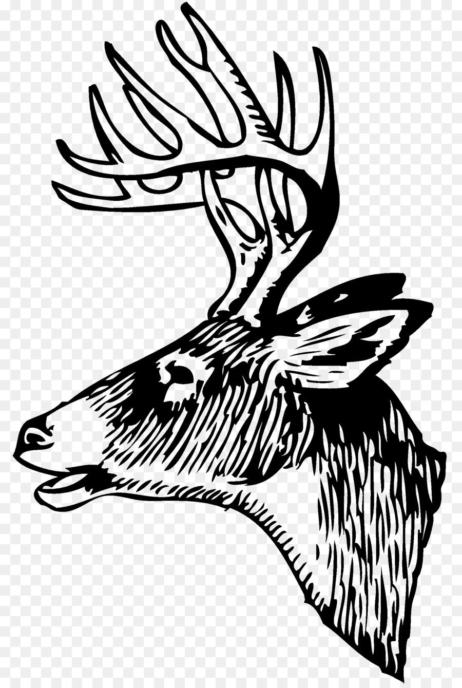 White-tailed deer Red deer Elk Clip art - hunting png download - 850 ...