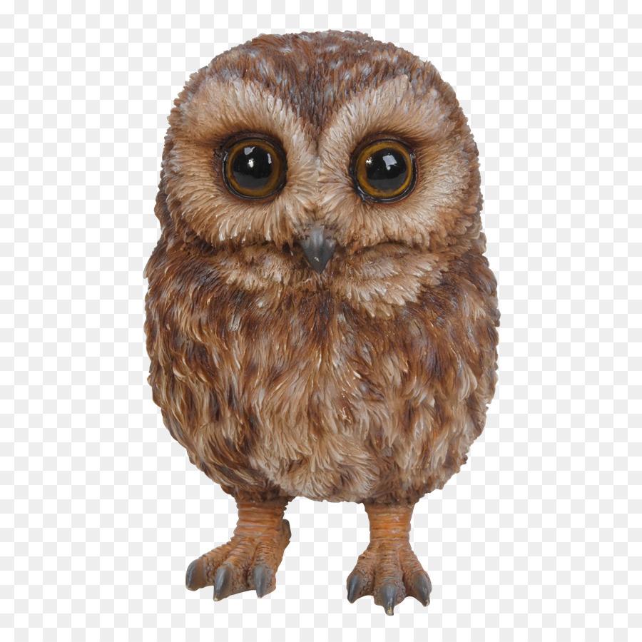 Tawny owl Bird of prey Garden ornament - garland png download - 583 ...