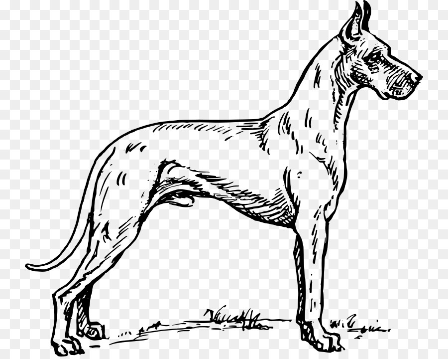 Great Dane Dachshund Puppy Clip Art