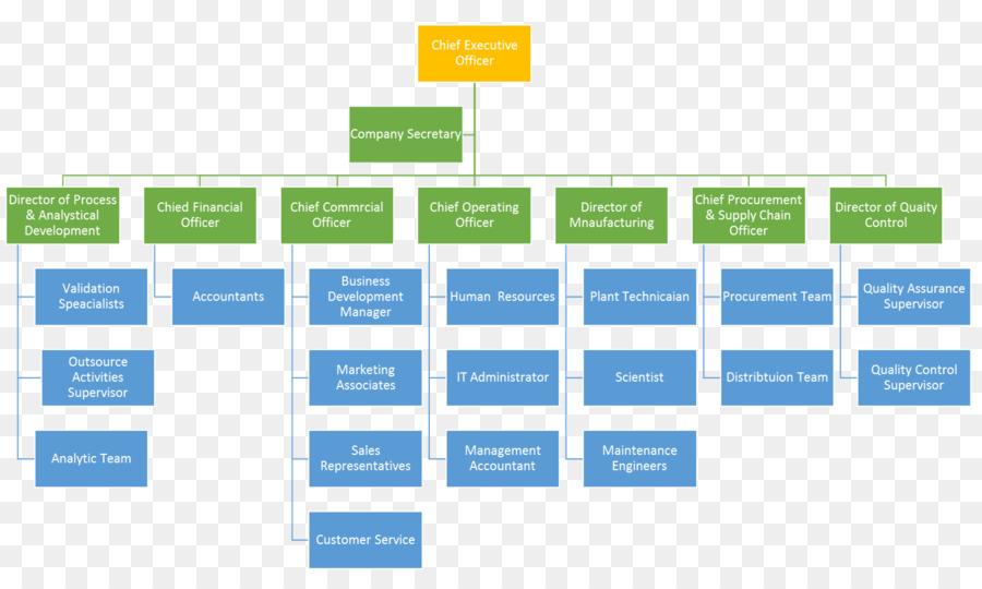 organizational chart organizational structure company