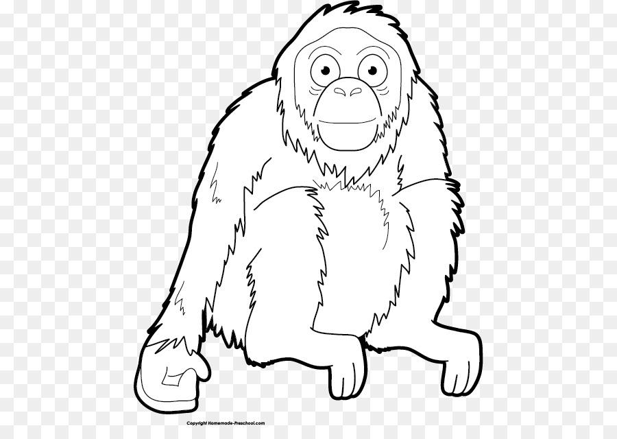 drawing art clip art orangutan clipart png download 510 621
