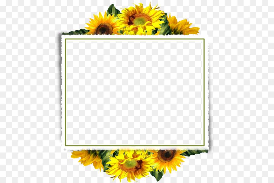 Common Sunflower Picture Frames Clip Art