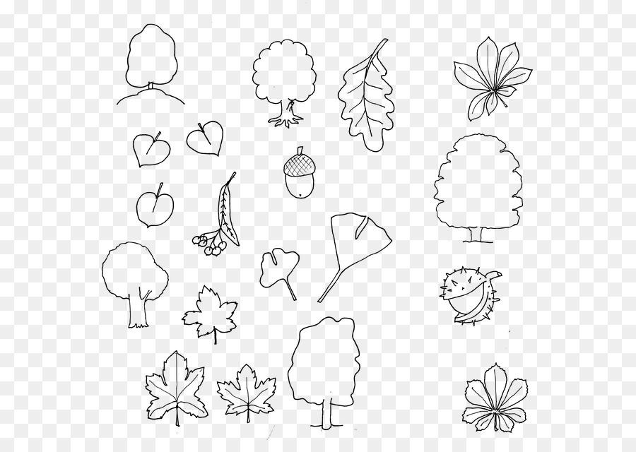 Ağaç Sonbahar çizim Kitabı Hat Sanatı Boyama Ginkgo Ağacı Png