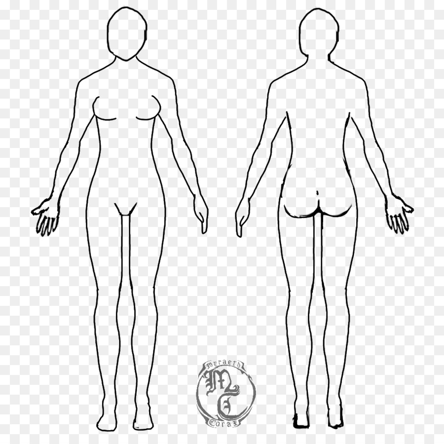 Female Body Shape Human Body Diagram Drawing Woman Family Linear