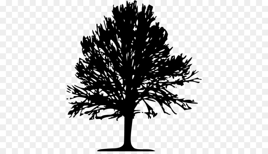 Family Tree Silhouette png download - 512*512 - Free