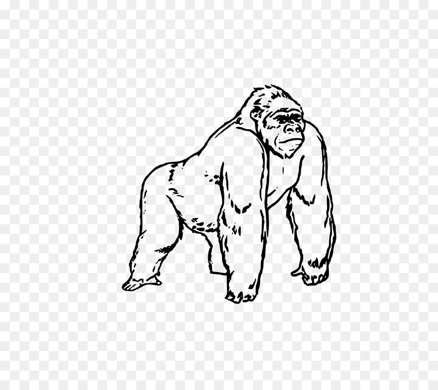 Gorila de libro para Colorear de Niño para Colorear Y Aprendizaje ...