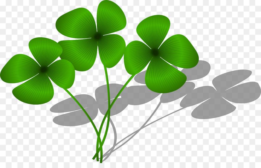 Four Leaf Clover Good Luck Charm Saint Patricks Day