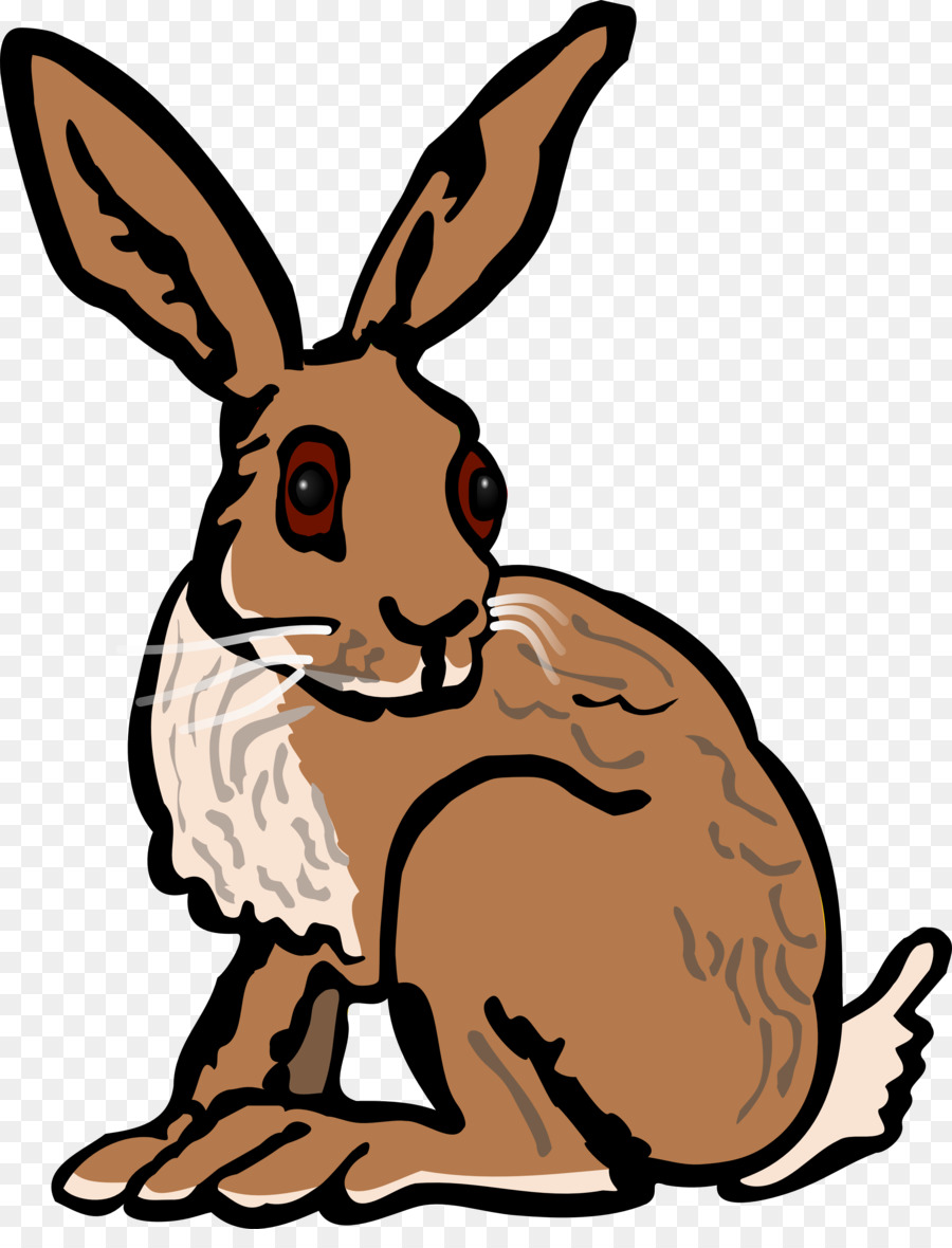 european hare arctic hare rabbit clip art hare png download 2974 rh kisspng com