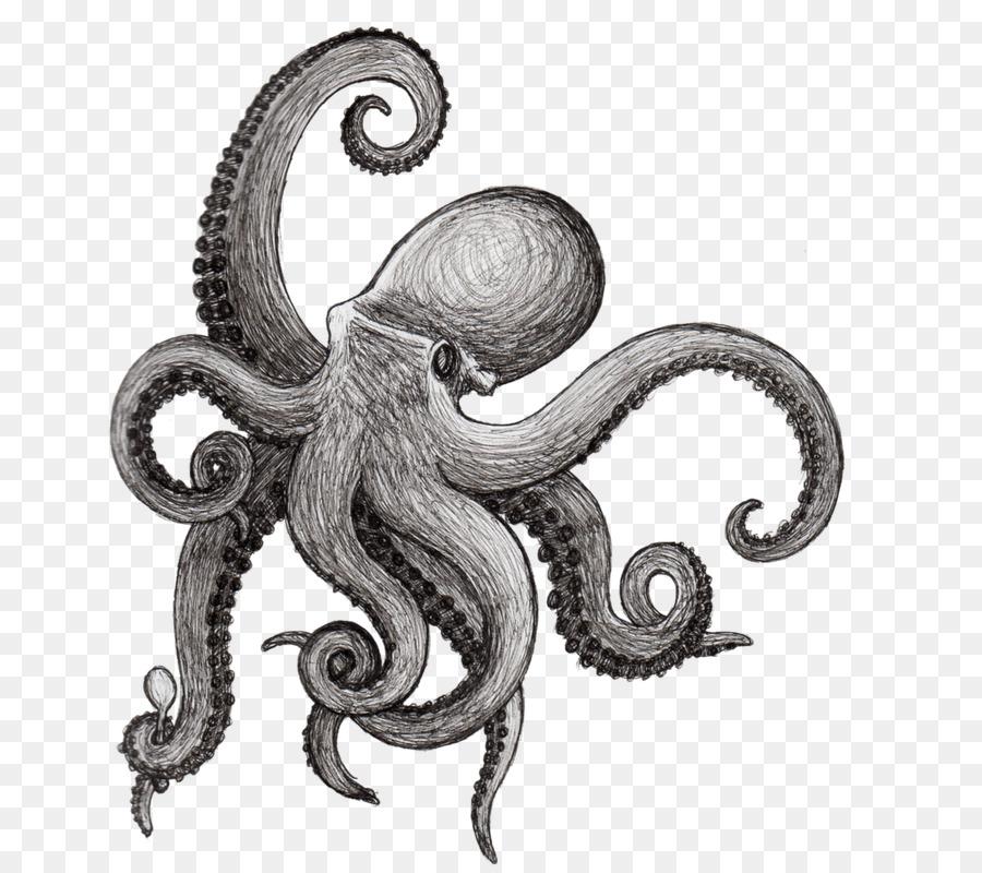 Octopus Drawing Squid Kraken Cephalopod