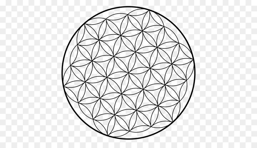 sacred geometry overlapping circles grid flower fractal geometry