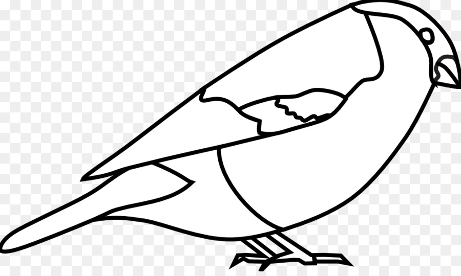 Kuş Kağıt Kalıp Avrasya Bullfinch Boyama Kitabı şakrak Kuşu Png