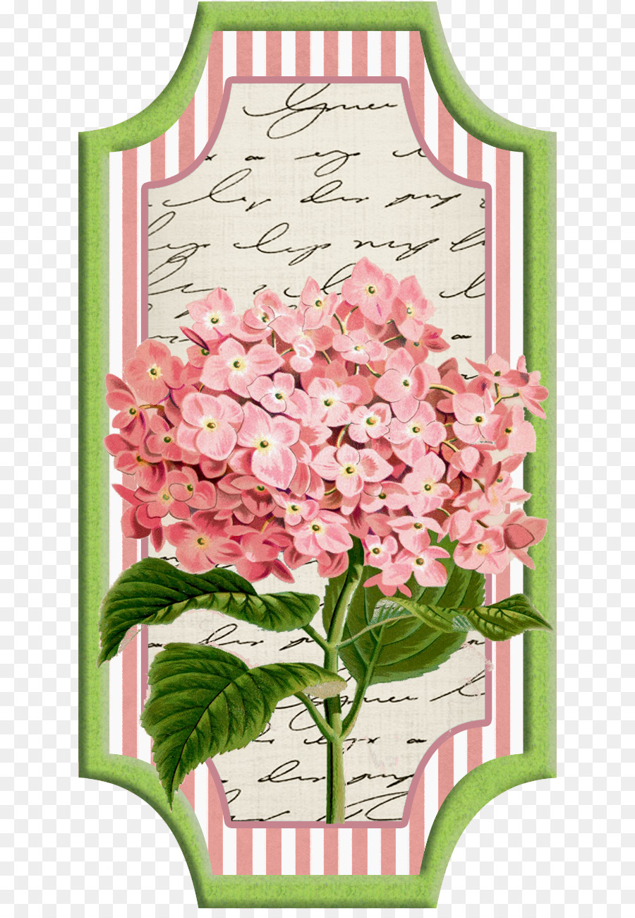 Cut Flowers Paper Wedding Invitation Oakleaf Hydrangea Flower Png