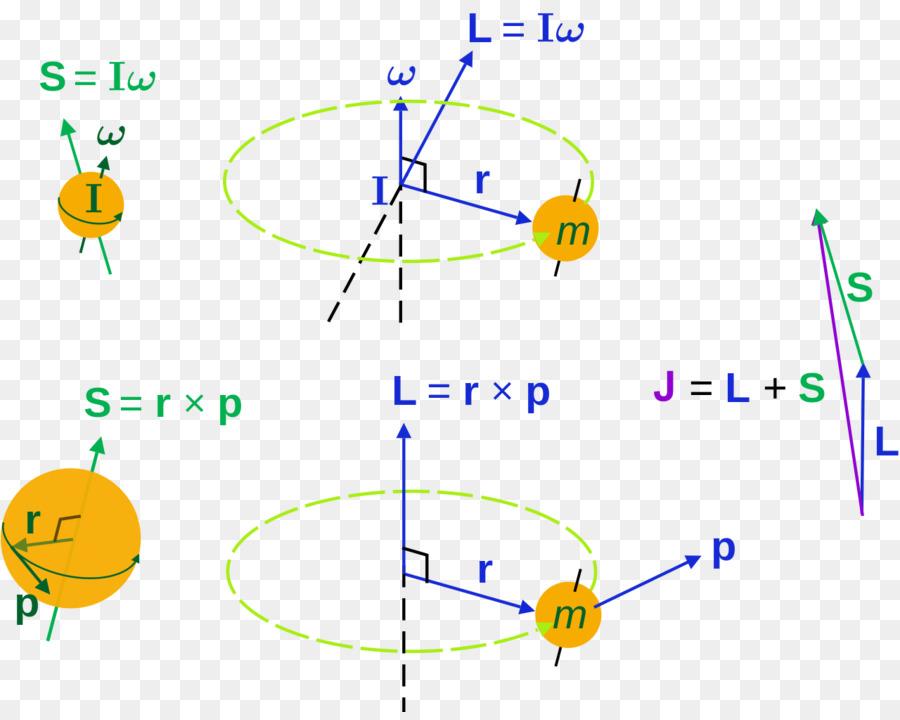Angular momentum azimuthal quantum number rotation spin dynamic angular momentum azimuthal quantum number rotation spin dynamic particle ccuart Images
